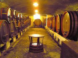 wijn en streekprodukten tours en Toscane