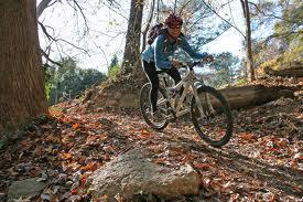 mountain bike nei boschi in Toscana